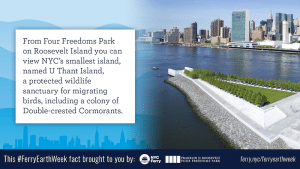 Four Freedoms Park on Roosevelt
